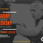 stage : travail autour des armes 1er et 2 juin 2019